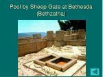 pool by sheep gate at bethesda bethzatha