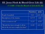 iii jesus flesh blood gives life 6 1 st i am i am the bread of life 6 35 4849
