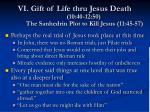 vi gift of life thru jesus death 10 40 12 50 the sanhedrin plot to kill jesus 11 45 57