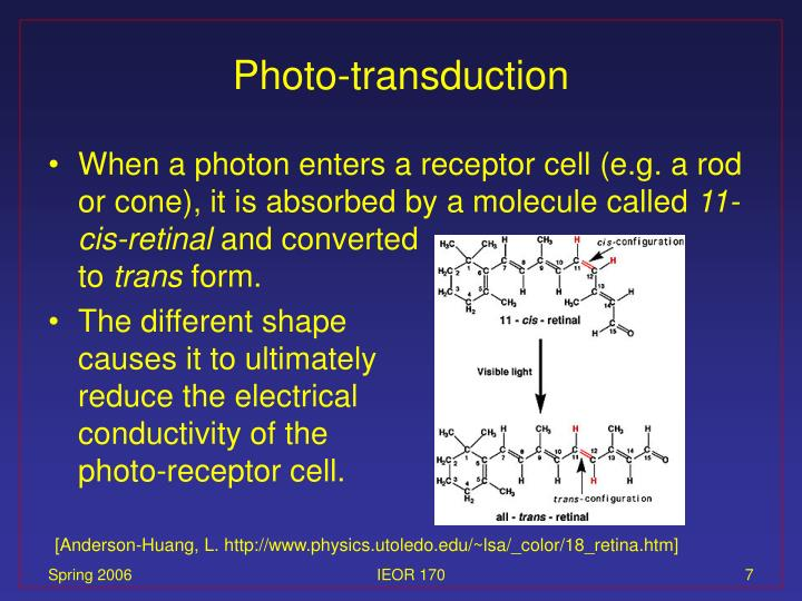 Photo-transduction