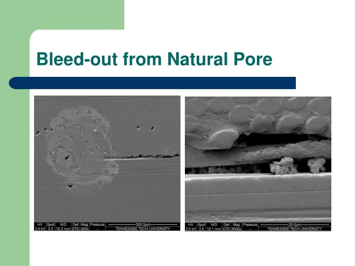 Bleed-out from Natural Pore