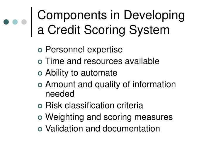 Components in developing a credit scoring system