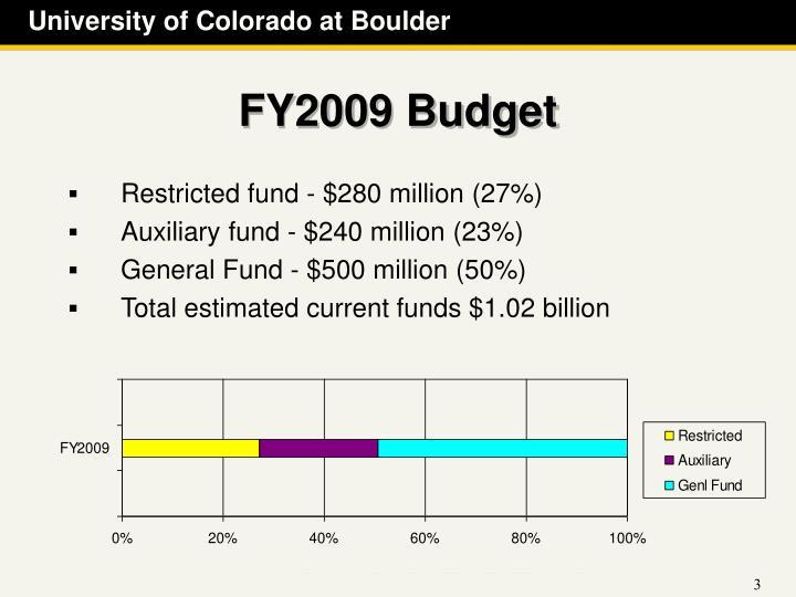 FY2009 Budget