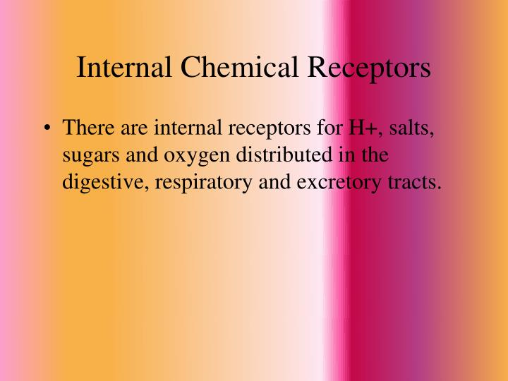 Internal Chemical Receptors