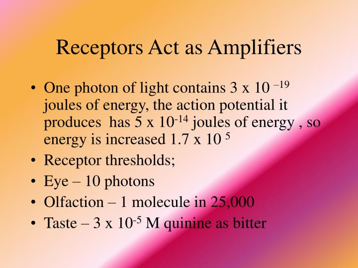 Receptors Act as Amplifiers