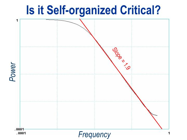 Is it Self-organized Critical?