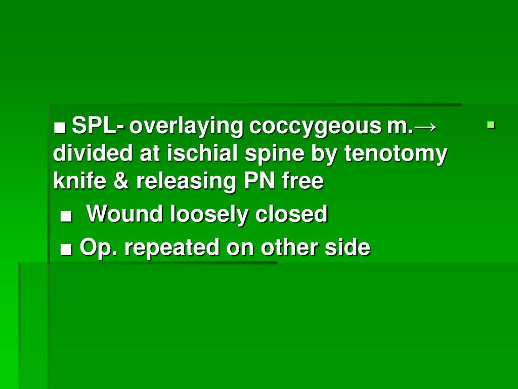 ■ SPL- overlaying coccygeous m.→        divided at ischial spine by tenotomy    knife & releasing PN free