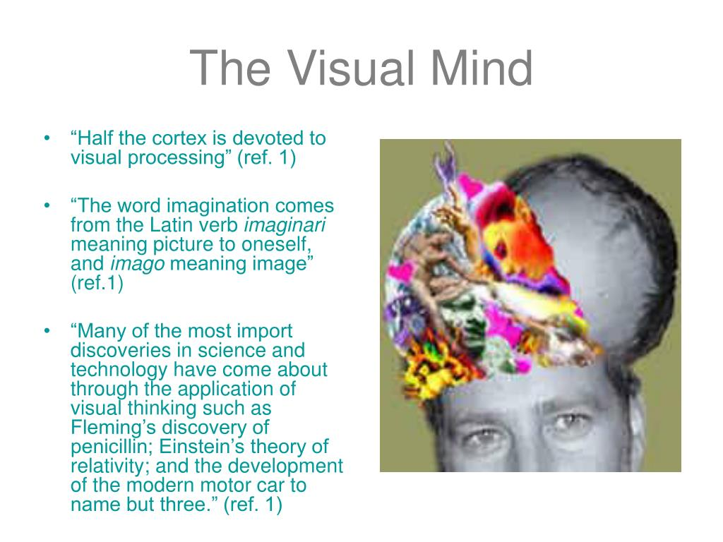 The Visual Mind