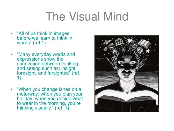 The visual mind3