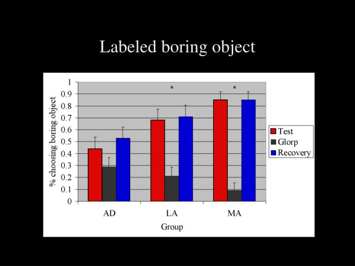 Labeled boring object