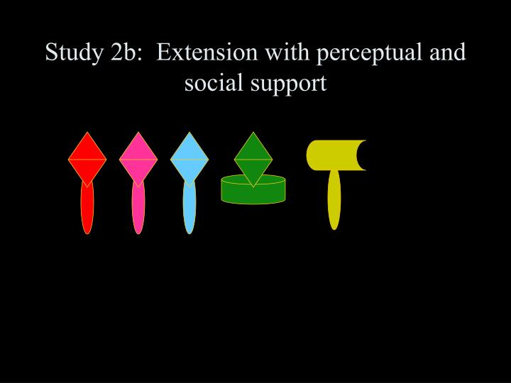 Study 2b:  Extension with perceptual and social support