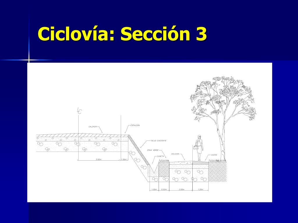Ciclovía: Sección 3