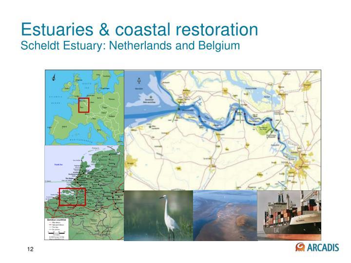 Estuaries & coastal restoration