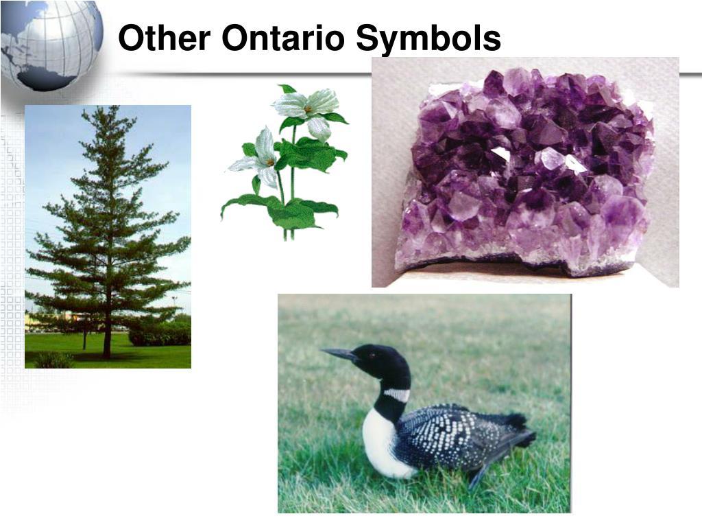 Other Ontario Symbols