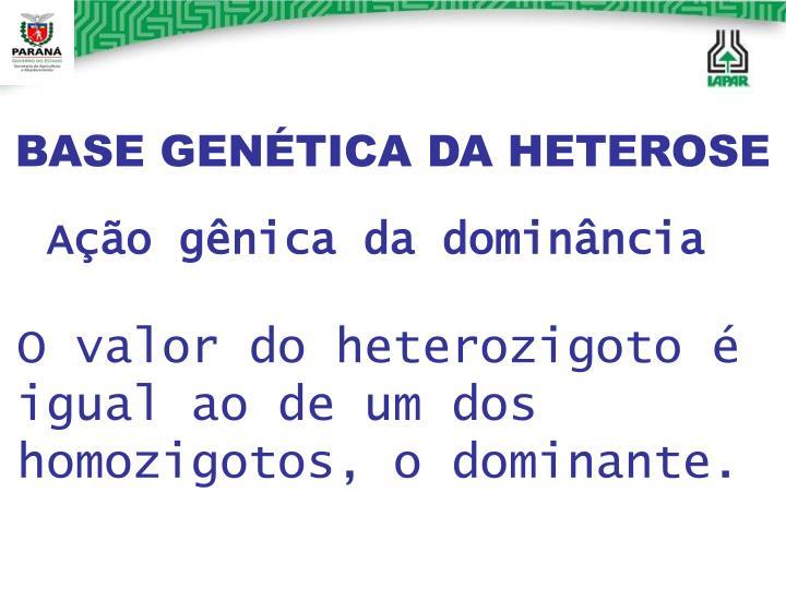 BASE GENÉTICA DA HETEROSE