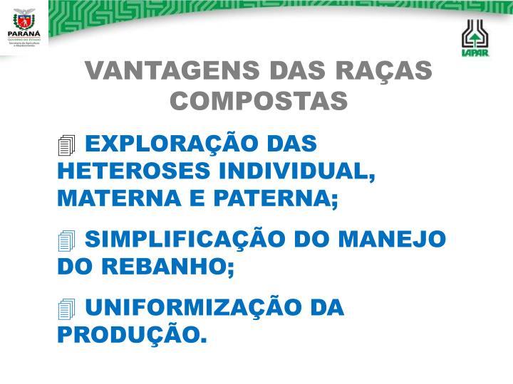VANTAGENS DAS RAÇAS COMPOSTAS
