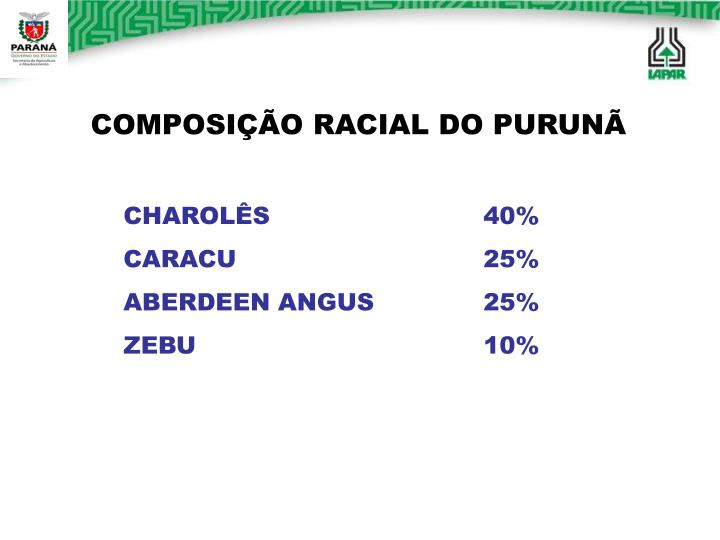 COMPOSIÇÃO RACIAL DO PURUNÃ