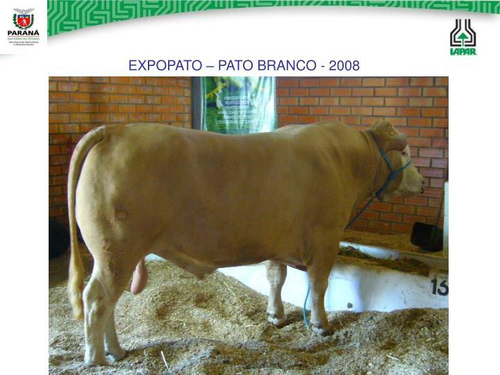 EXPOPATO – PATO BRANCO - 2008