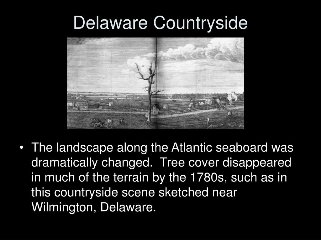 Delaware Countryside
