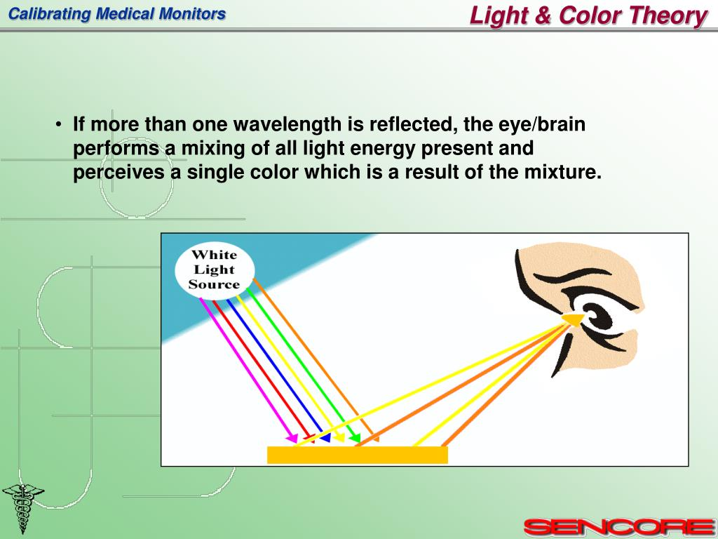 Light & Color Theory