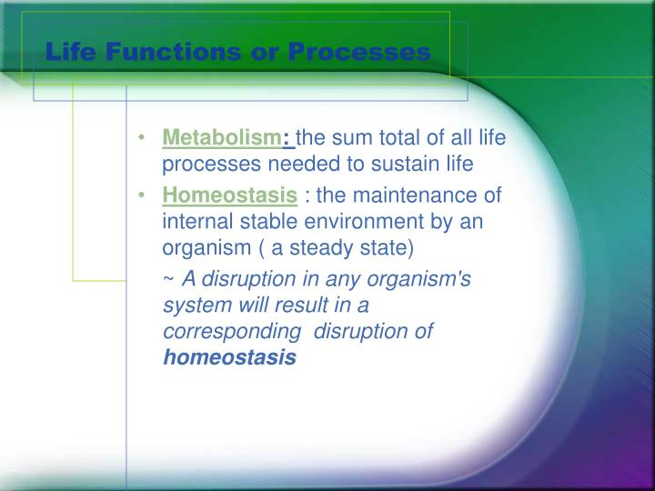 Life Functions or Processes