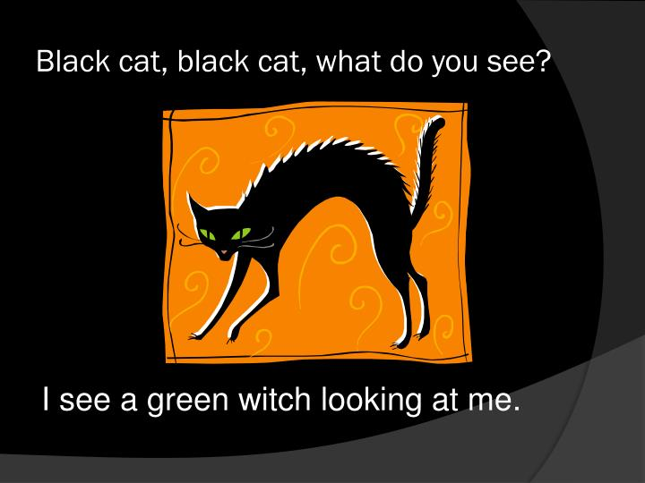 Black cat black cat what do you see2