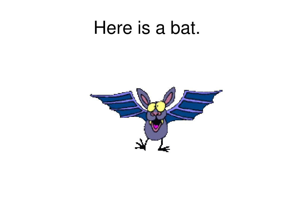 Here is a bat.