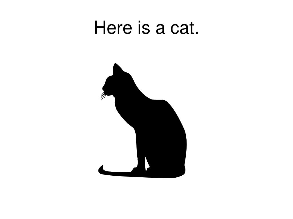 Here is a cat.