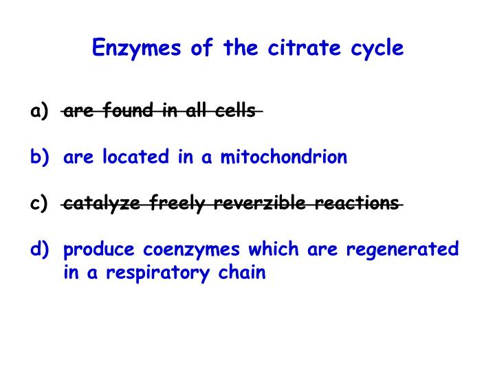 Enzymes of the citrate cycle