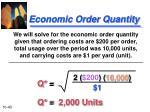economic order quantity1