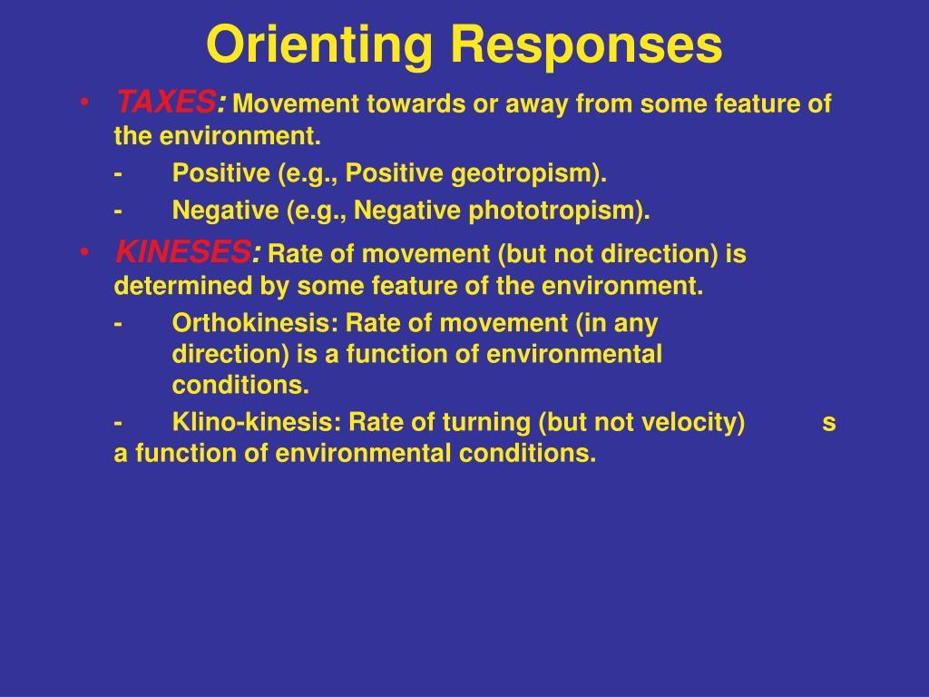 Orienting Responses