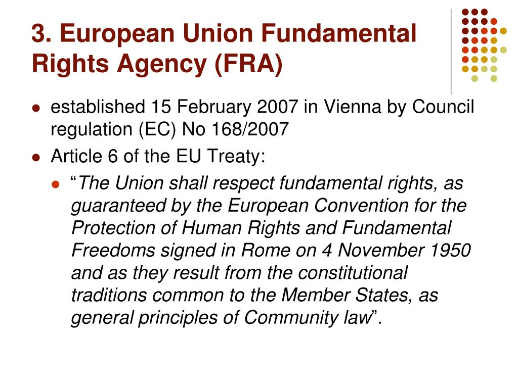 3. European Union Fundamental Rights Agency (FRA)