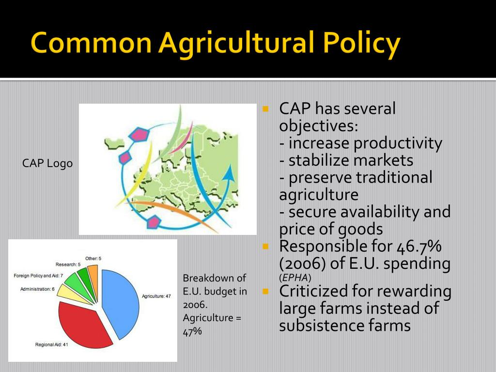 Common Agricultural Policy