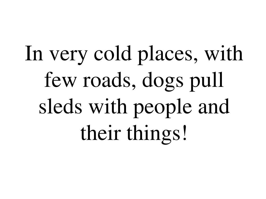In very cold places, with few roads, dogs pull sleds with people and their things!
