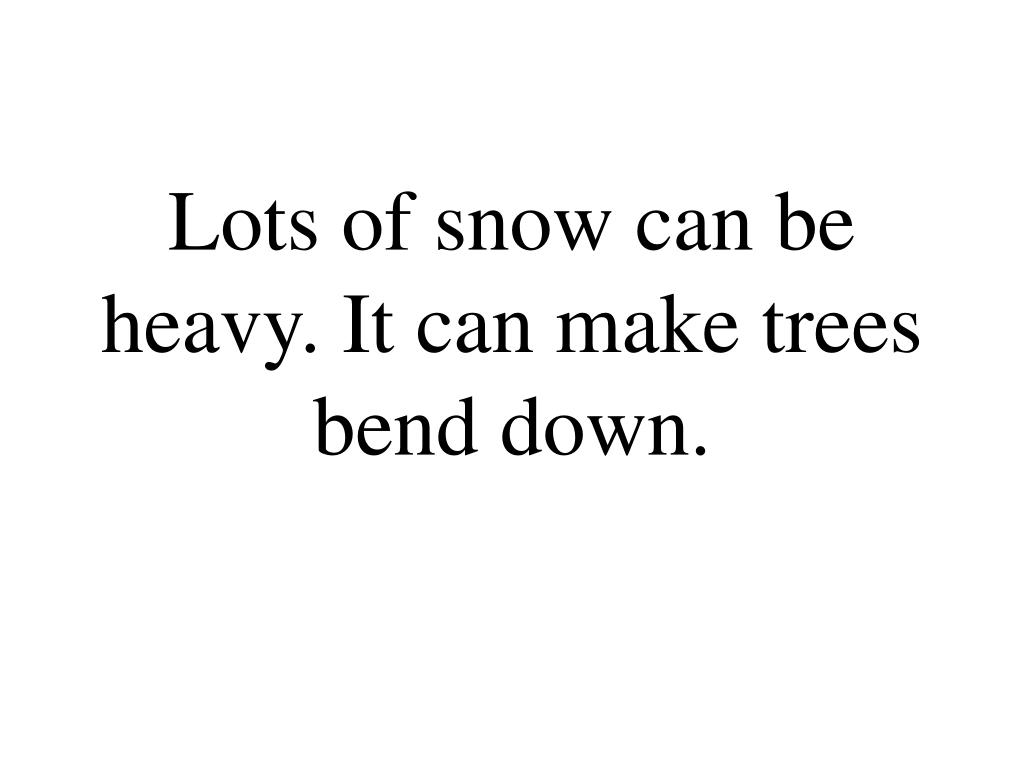 Lots of snow can be heavy. It can make trees bend down.
