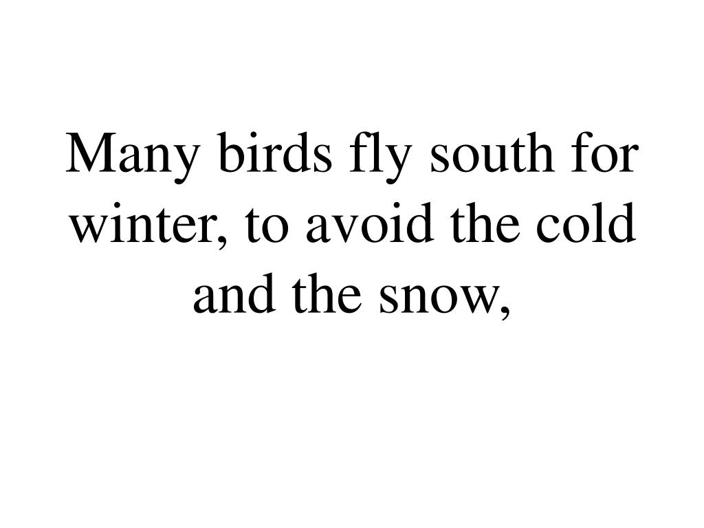 Many birds fly south for winter, to avoid the cold and the snow,