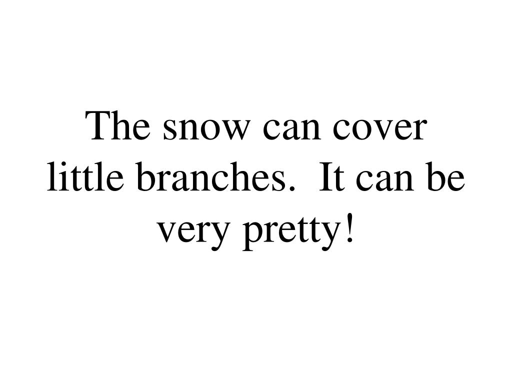 The snow can cover little branches.  It can be very pretty!