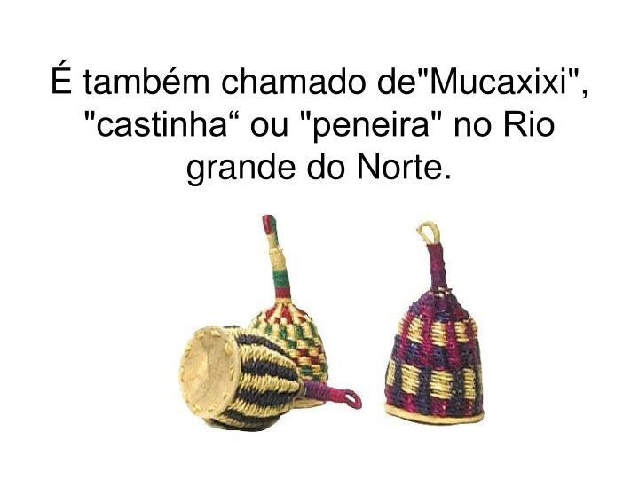 """É também chamado de""""Mucaxixi"""", """"castinha"""" ou """"peneira"""" no Rio grande do Norte."""