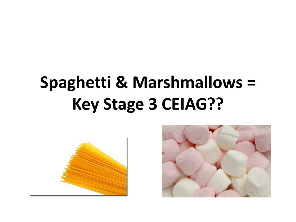 Spaghetti & Marshmallows = Key Stage 3 CEIAG??