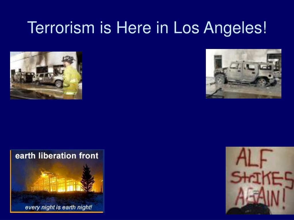 Terrorism is Here in Los Angeles!