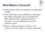 what makes a terrorist13