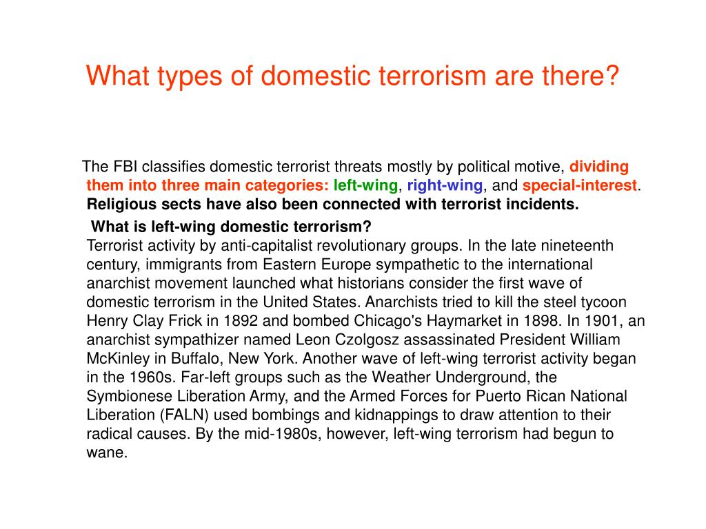 What types of domestic terrorism are there?
