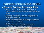 foreign exchange risks1