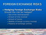 foreign exchange risks3