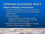 foreign exchange risks4