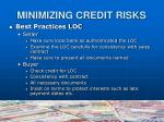 minimizing credit risks11