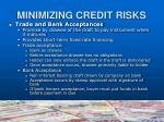 minimizing credit risks13