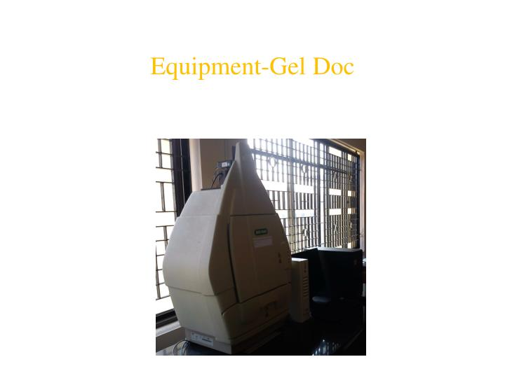 Equipment-Gel Doc