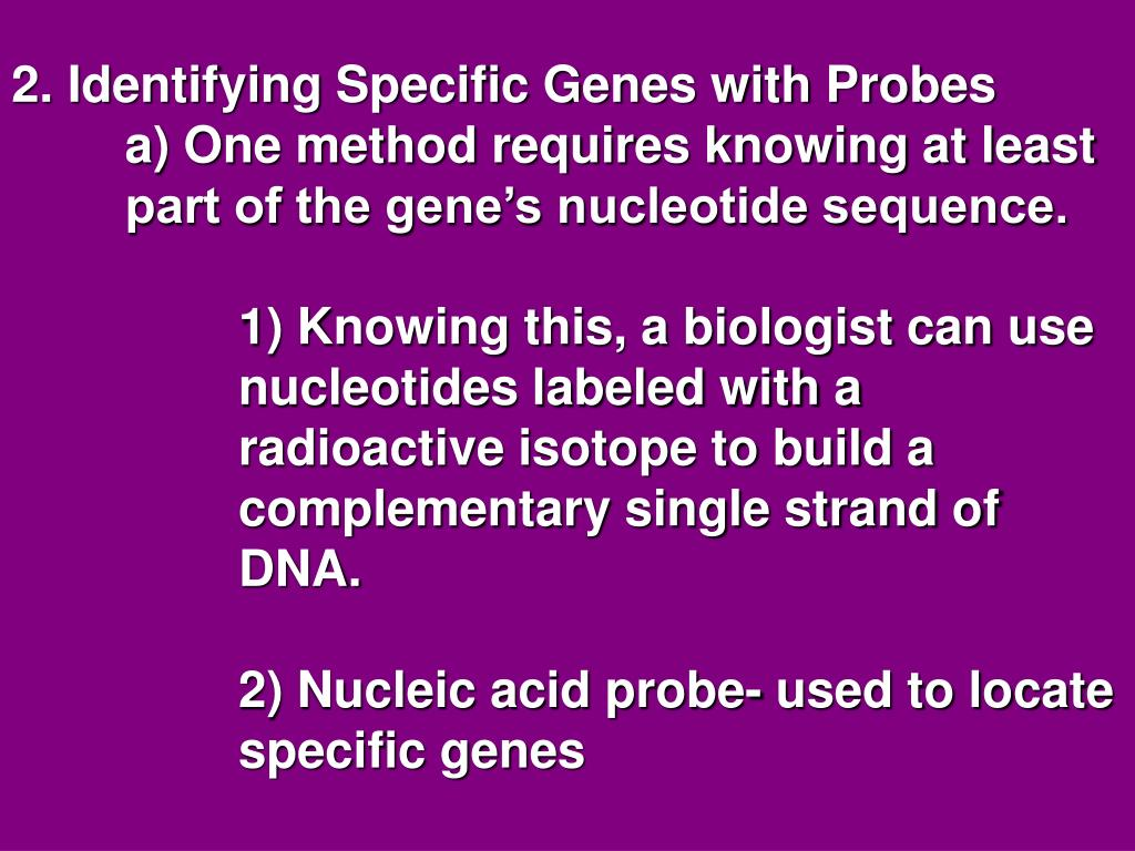 2. Identifying Specific Genes with Probes