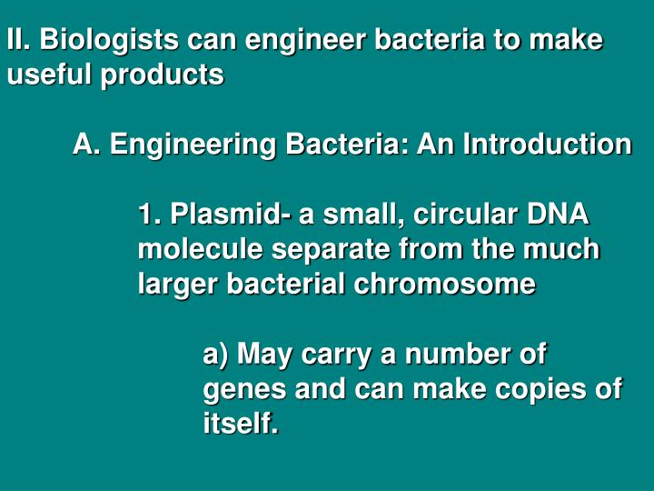 II. Biologists can engineer bacteria to make useful products